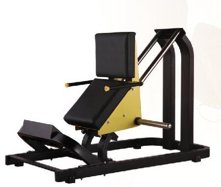 LD945坐式小腿训练器