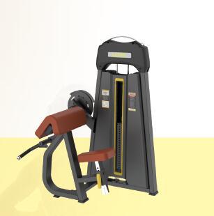 LD1030 45度二头肌训练器