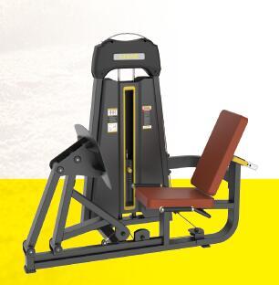 LD1003坐式蹬腿训练器