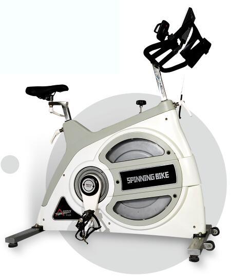 LDY600动感单车